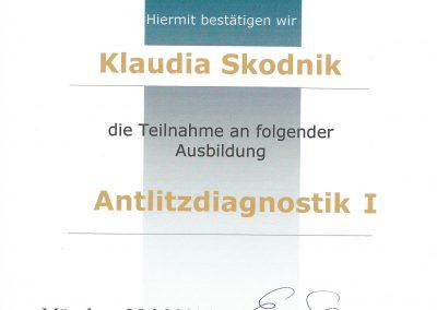 Antlitzdiagnostik